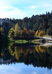 lago con riflessi