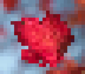 Bitmap background imitating red leaf