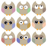 Set of multicolored owls