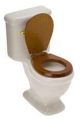 Toilette mit Wasserkasten