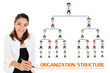 Постер, плакат: Organization structure of business concept