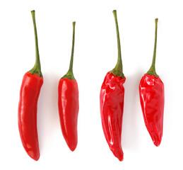 Chilischoten frisch & getrocknet