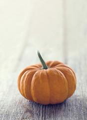 Single orange pumpkin