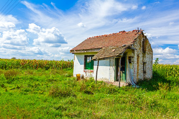Abandoned farm house in a cornfield