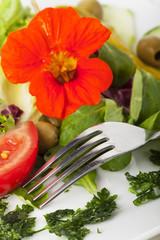Gabel mit Salat und Chiffonade