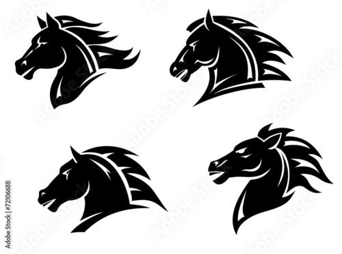 Horse mascots - 72106688
