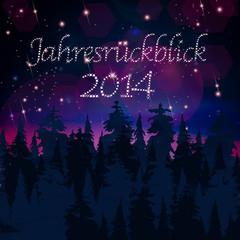 Der Jahresrückblick 2014