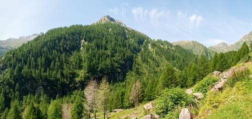 Val sambuco towards the lake Naret