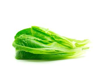 Cos Lettuce salad.