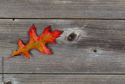 hoja-de-roble-otonal-individual-en-madera-rustica