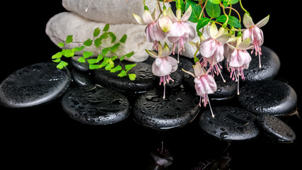spa setting of branch pink fuchsia flower, towels, leaf fern  an