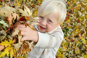 Young Child Playing Outside with Fallen Leaves in Autumn