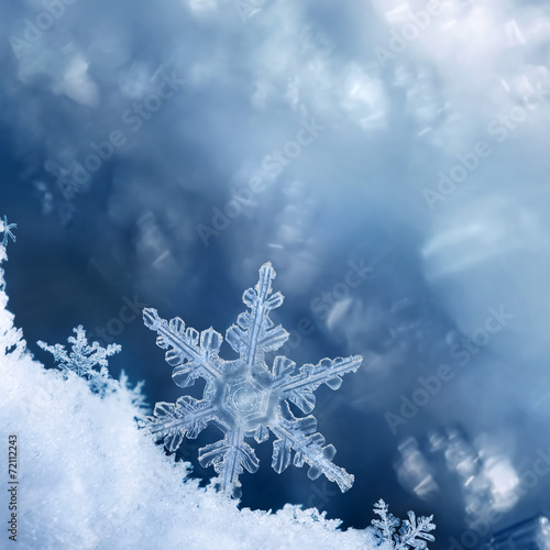 Foto op Canvas Water planten Snowflake Edge