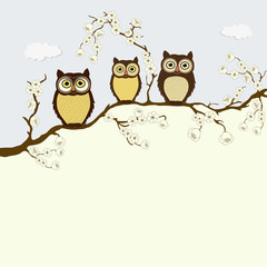 Card with family of owls on a branch with flowers