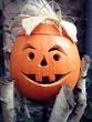 canvas print picture - halloween pumpkin