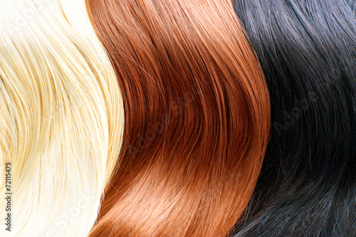 Hair colors palette. Blonde, brown and black hair colours Poster