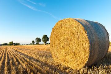 Round bale of straw