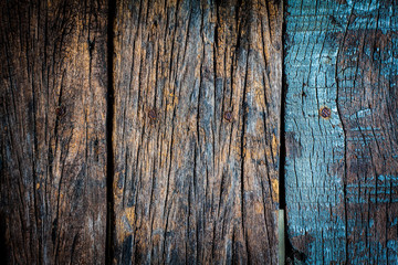 Texture and color of old  log