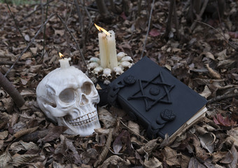 Scary skull, candles and black magic book in the forest