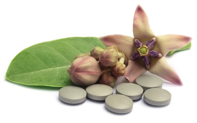 Medicinal Crown flower with pills
