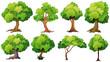 Tree - 72128437