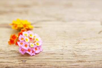 Lantana flower on wooden table