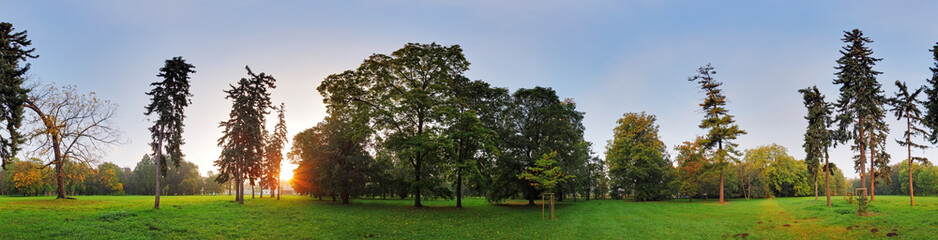 360 degree panorama, forest in park