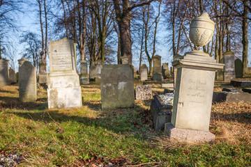 Historic cemetery (18th century) - Poland