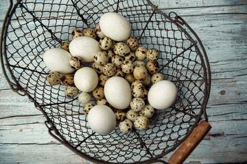 Duck and Quail Eggs
