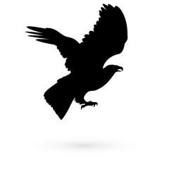 Icon falcon. Raster