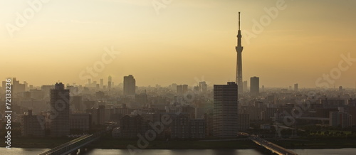 Foto op Canvas Tokyo Tokyo sky tree and Tokyo city view