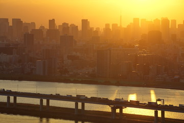 View of Tokyo city and sunset sky in autumn season