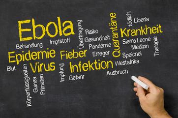Word Cloud auf einer Tafel zum Thema Ebola