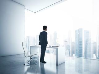 Businessman looking megalopolis through window