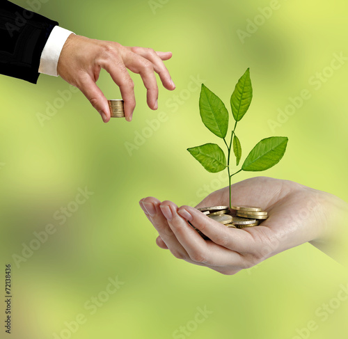 Tuinposter Olijfboom Investing to green business