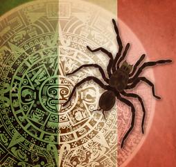 Background with Aztec calendar and tarantula