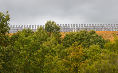 Paneles Solares y Bosque de Robles