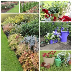 collage of garden images