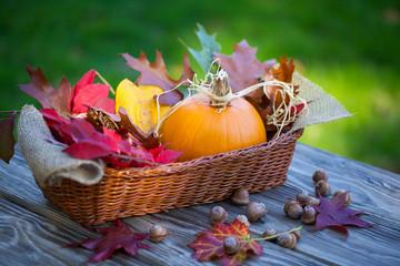 Autumn arrangement of pumpkin
