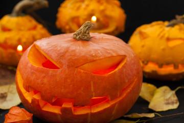 Halloween pumpkins on black background