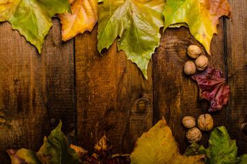 Autumn leaves on wood board