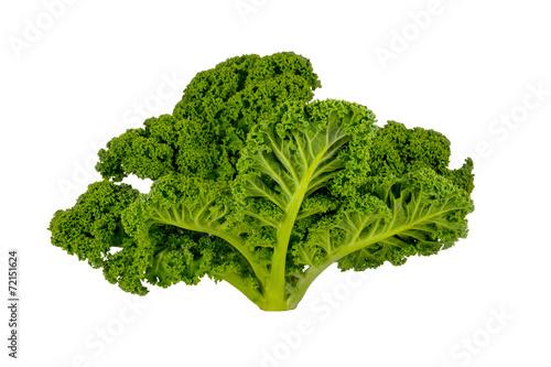 Spoed canvasdoek 2cm dik Groenten Kale