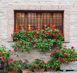 Finestra romantica con fiori