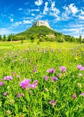 Magnifique paysage en Provence à Plan-de-Baix