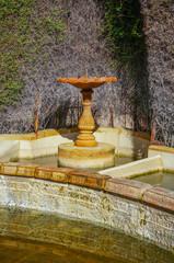 Stone birdbath in garden