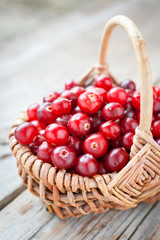 Fresh red cranberries in basket