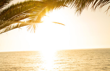 Tropical Island Sunrise