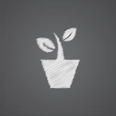 houseplant sketch logo doodle icon.