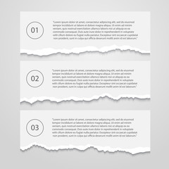 Vector Set of lacerated  sheets with numbers,infographic,banner