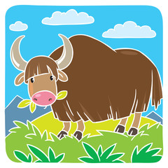 Funny wild yak